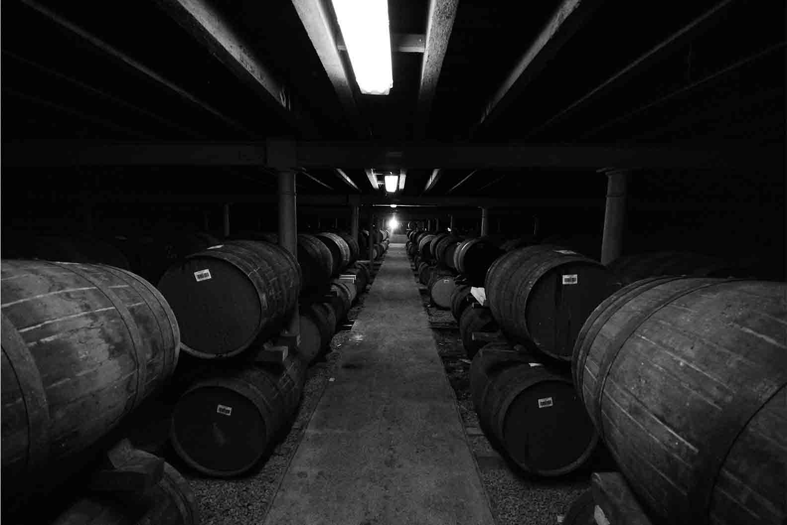 Cellar of whisky casks