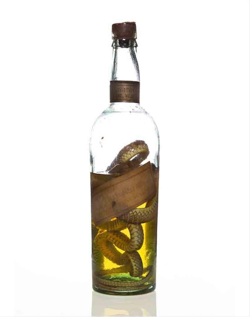 Botella de whisky Old Highland con una serpiente en el interior